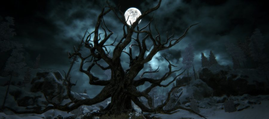 kholat arbre